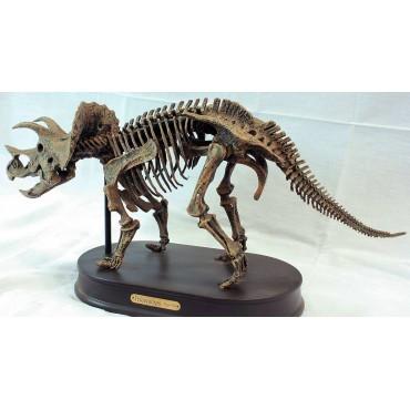 Triceratops-DINOSAURIOS