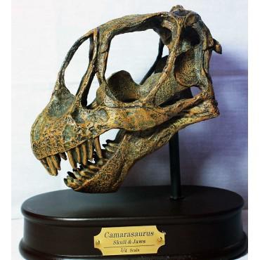 Camarasaurio-DINOSAURIOS