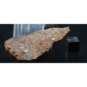 Meteorito NWA LL3.5 MET1050