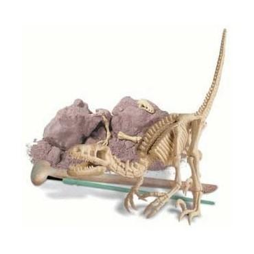Excavación de dinosaurio velociraptor