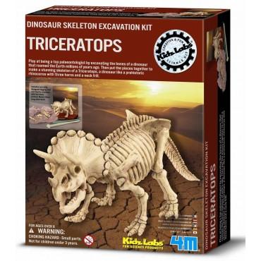 Excavación de dinosaurio Tyrannosaurus