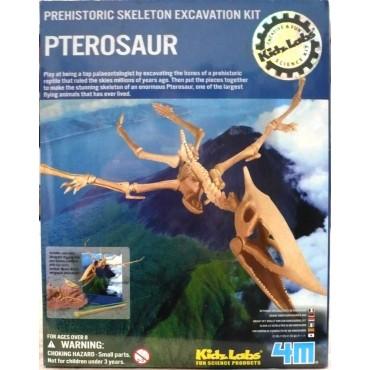 Excavación de pterosaurus