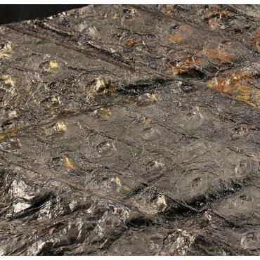 Fósil Sigillaria F2684