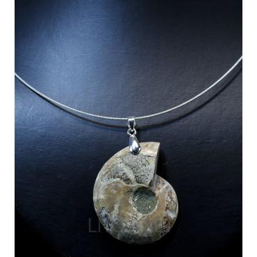 Colgante de Ammonite fosilizado J2742