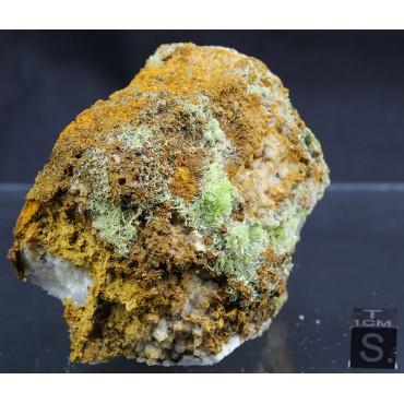 Piromorfita X1346