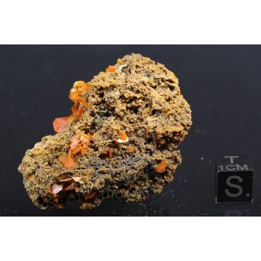 Cristal Wulfenita X1600