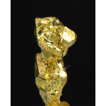 Mineral oro nativo X2017