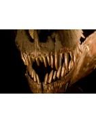 Garras y dientes